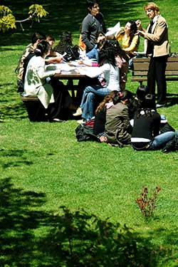 Bild Park an der Uni